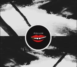 Pollux Zine (250x218).jpg